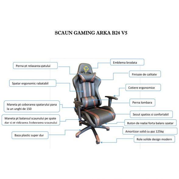 Scaun Gaming-birou- B24-Racing- V5- negru maro-zendeco (1)
